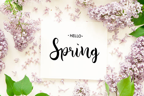Hello Spring with Lilac flowers on white background
